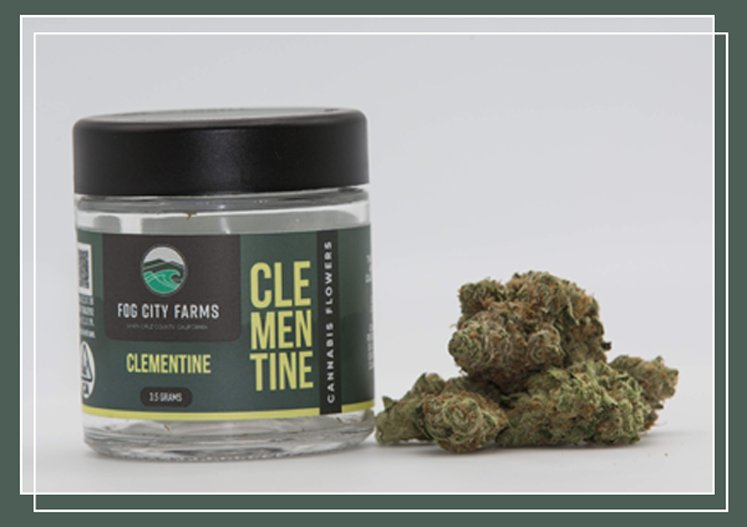 Flower Products - Clementine